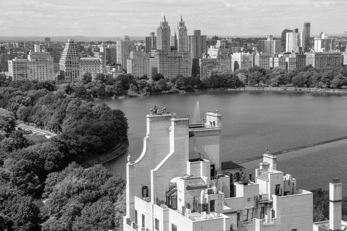 B+W View Of Central Parks Inner Landscape