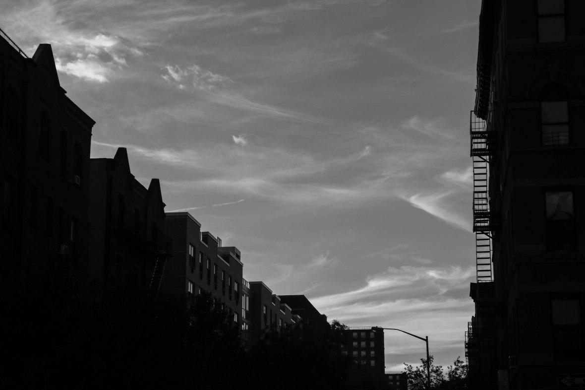 Black & White Silhouette N Skies