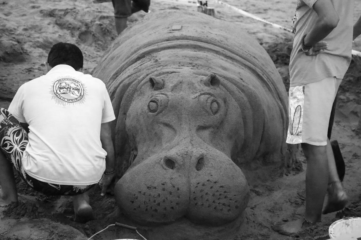 B + W Sand Hippo
