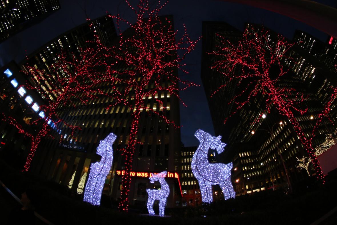 Tres Reindeer
