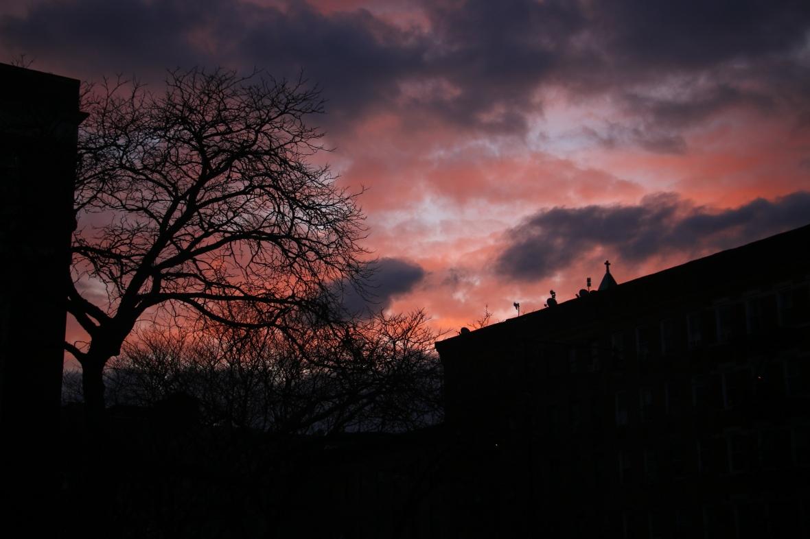 Landscape Portrait Series: Harlem Sunset 2016