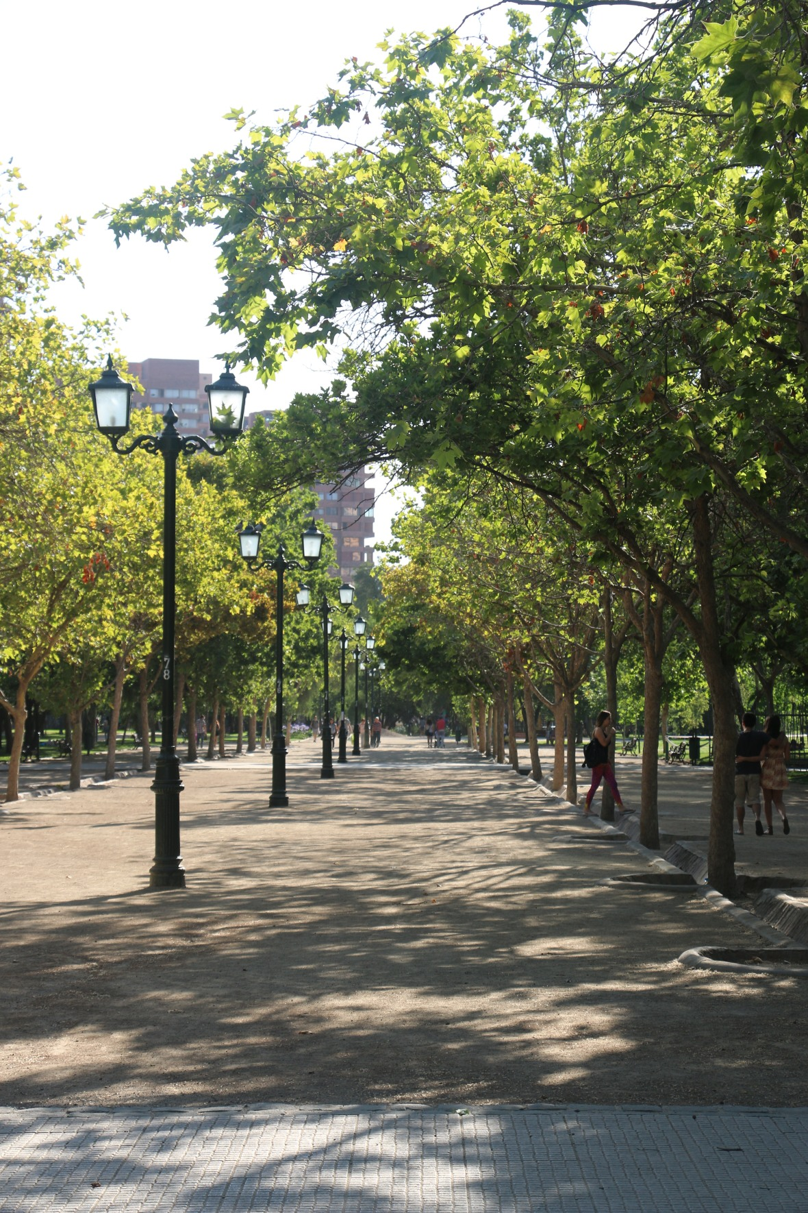 A Santiago Park