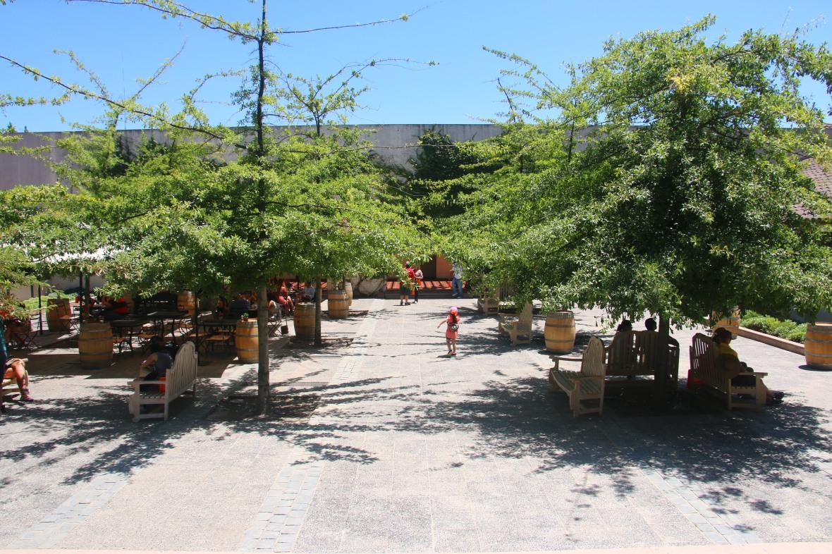 Concha Y Toro Courtyard