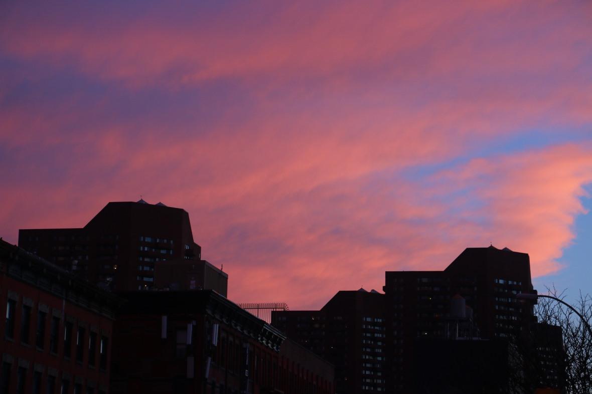 Pink/Blue Skies & Silhouettes (Harlem)