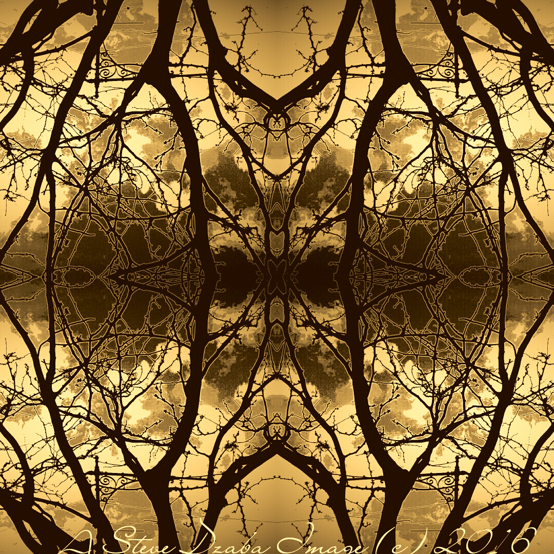 Abstract Portrait Series: The Woods Black & Gold