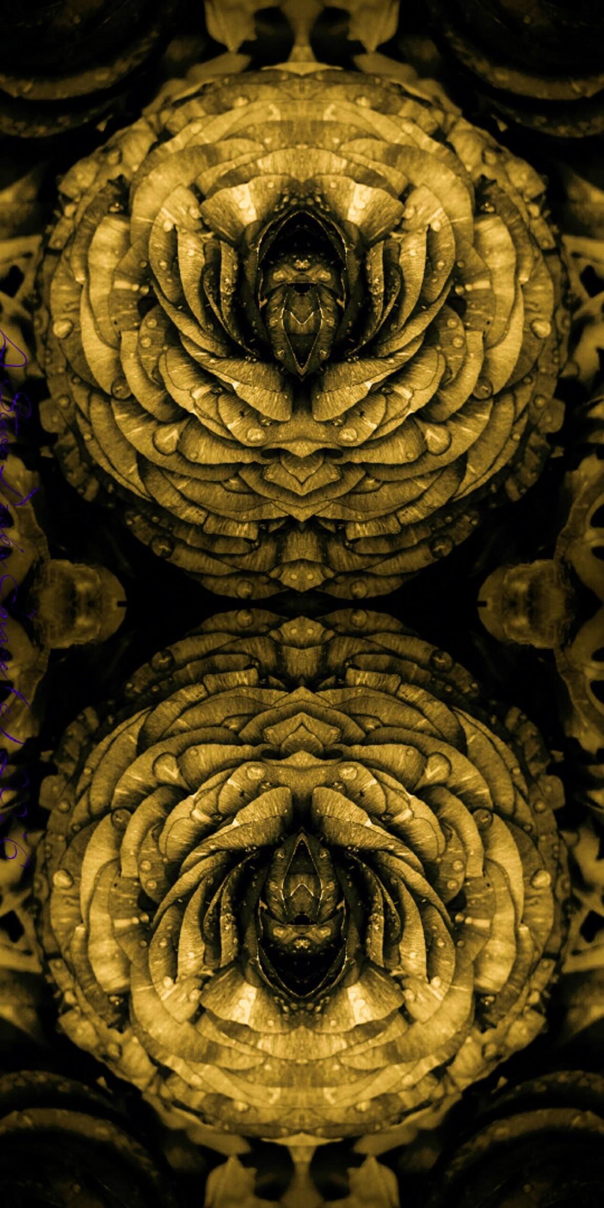 Twin Golden Rananculus Vertical