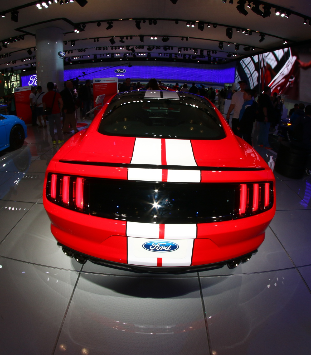 Shelby Rear View