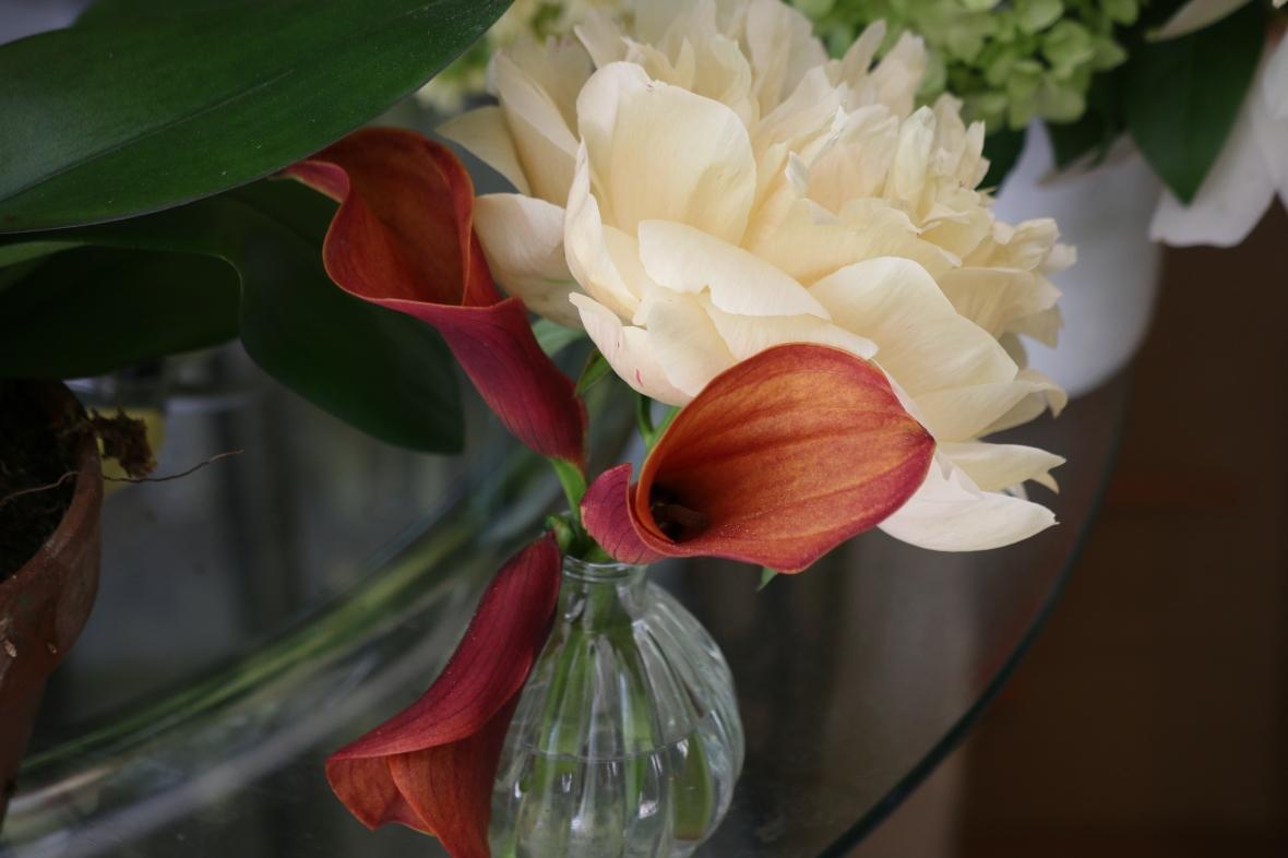 A miniature arrangement @ J Cellan Designs Floral Boutique, East Harlem, NYC.