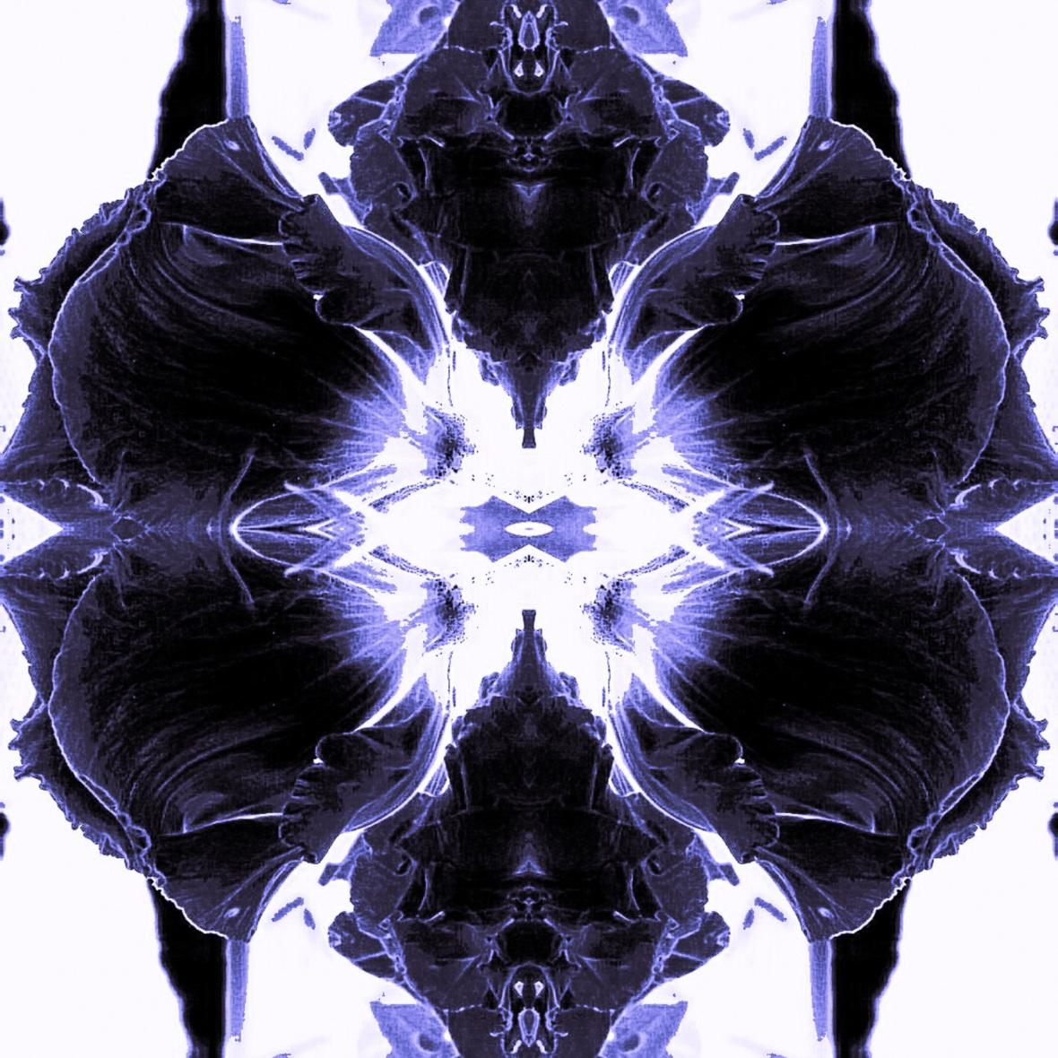 Floral Hypnosis Deep Purple