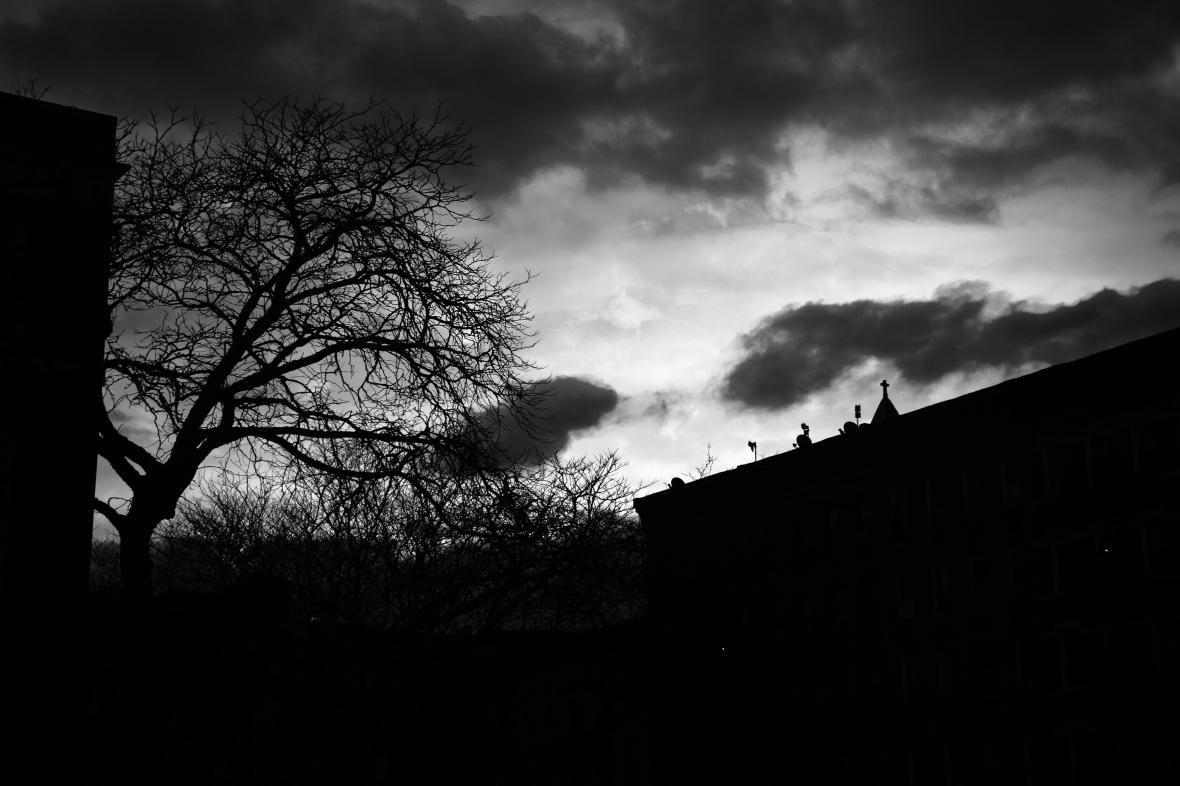 The Cold Dark World