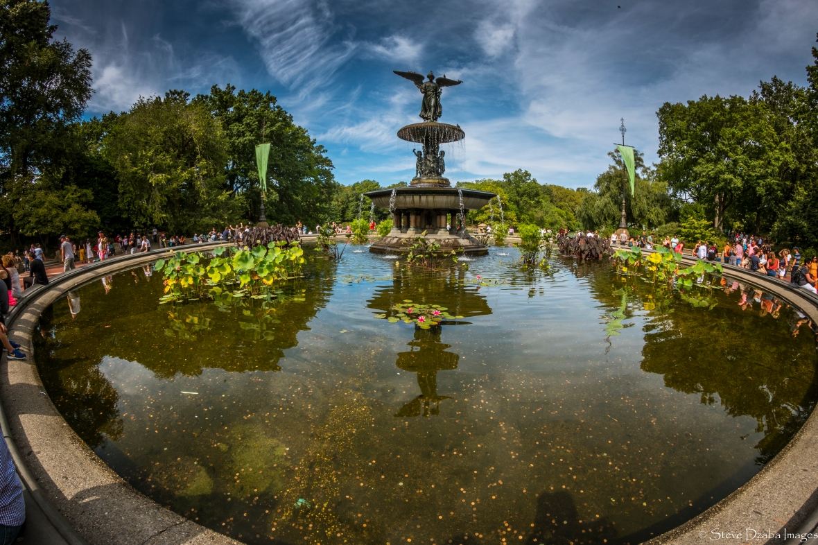 Central Park Series: The Fountain 2016