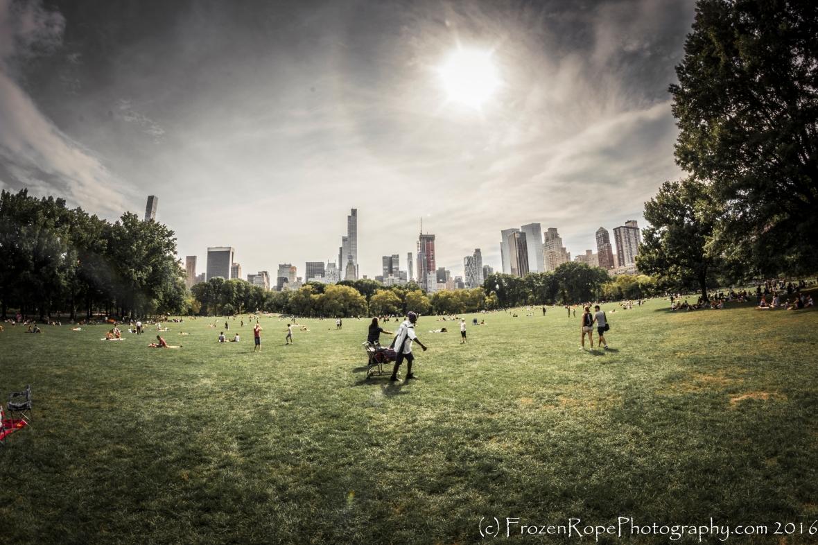 Central Park Scene: The Lawn