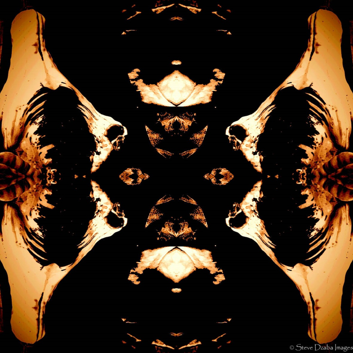 abstract-portrait-series-27