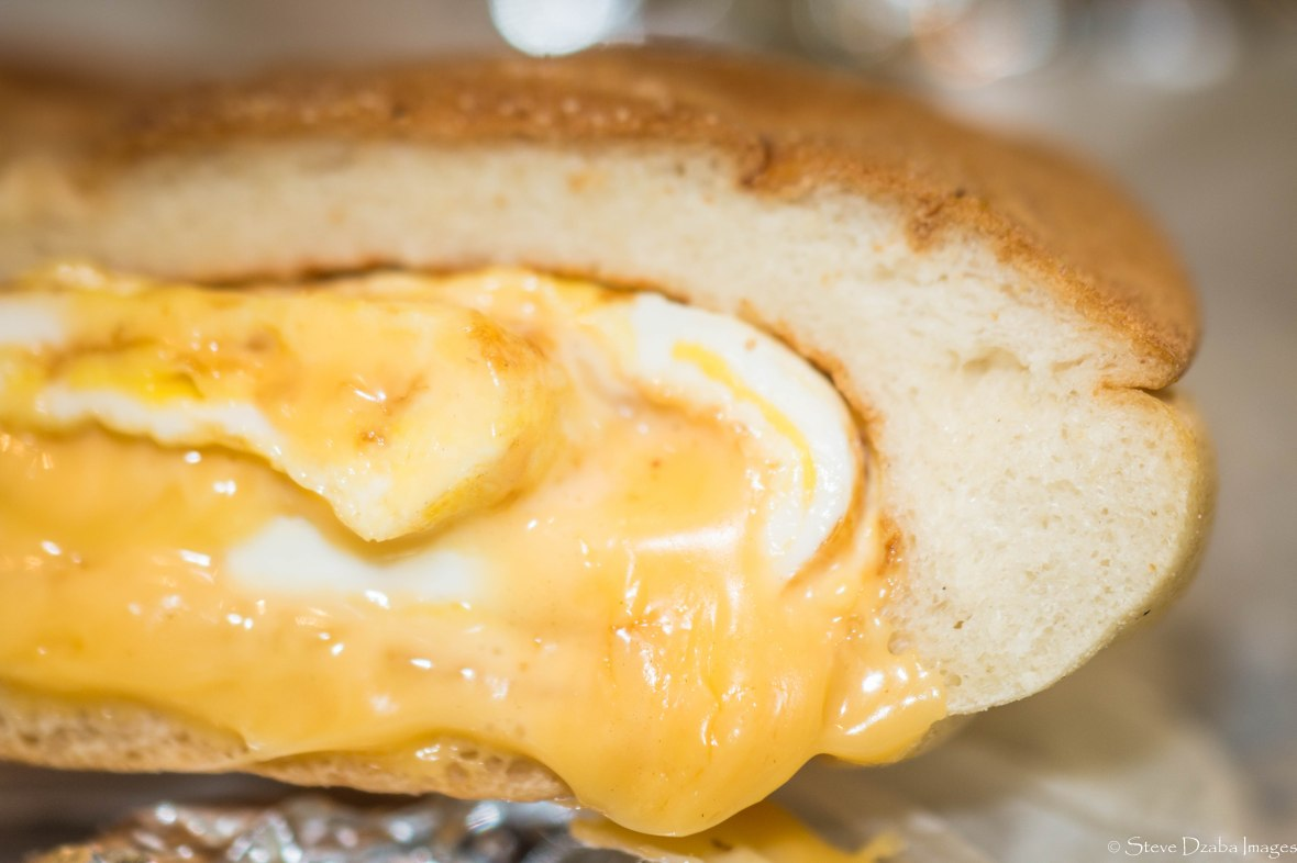 food-portrait-series-egg-cheese-on-a-roll