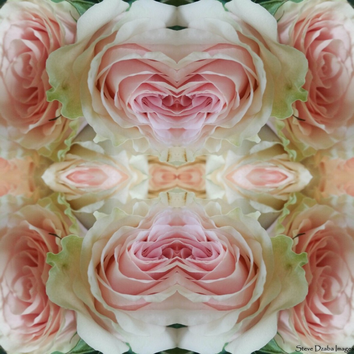 floral-portrait-series-the-eden-spray-pink-n-green-garden-roses-hearts-limited-edition-2